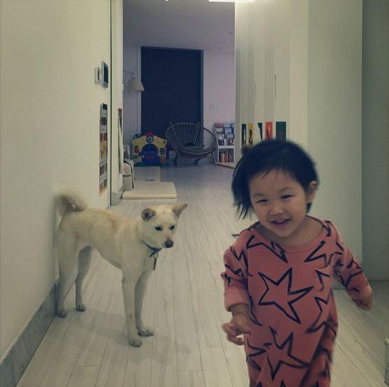 還有家裡養了無數隻(?) 好啦…也沒到無數 就是真的很多隻珍島犬的嚴泰雄 但這麼多狗狗,唯一可以進家門的只有새봄(春) 難怪雖然是忙內狗狗,但說到位階家裡是새봄稱王啊