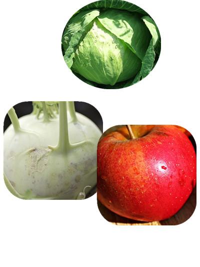 跟高麗菜最好的搭配,可以添加結頭菜、蘋果。 雖然高麗菜有益處, 但是單純只是高麗菜汁的話,味道其實不是人人可以接受的! 可以使用結頭菜或是蘋果,添加一些甜味, 而且它們還有補充皮膚水份的效果唷!