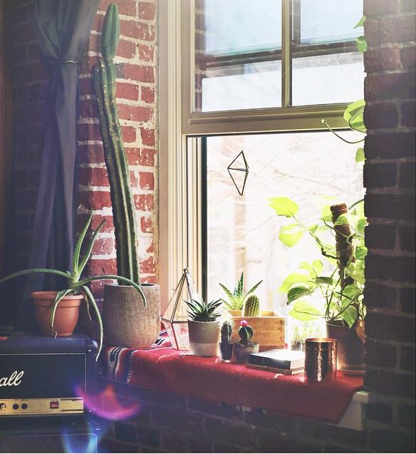 有大窗戶的話就是你的小花園呦♬