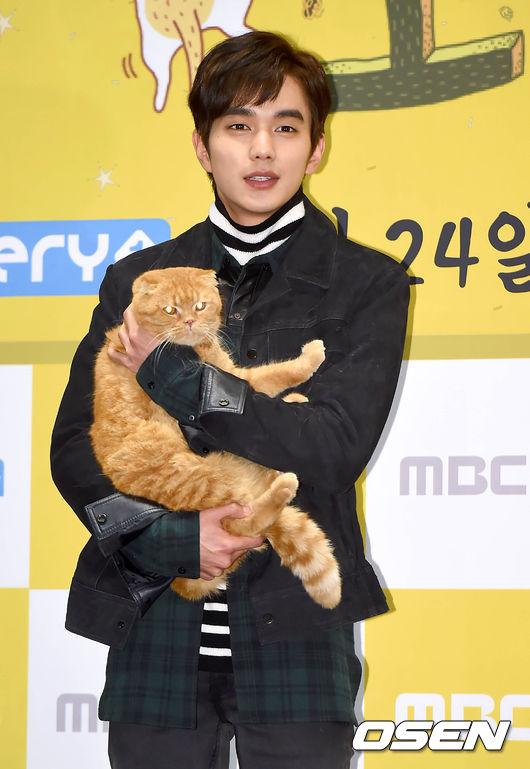 俞承浩 退伍之後重返小螢幕的第一部劇《想像貓》 是韓國第一部以貓為主題的電視劇,可愛的貓咪再搭上俞承浩的臉…一集只有40分鐘,療癒人心的時間怎麼夠啊!
