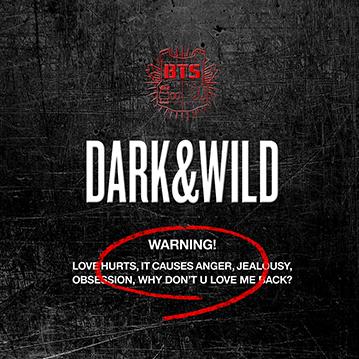 第10名:防彈少年團《Dark & Wild》