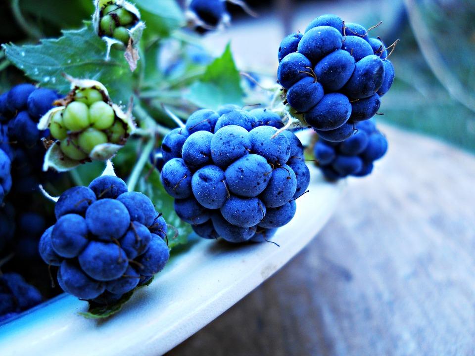 藍莓含抗氧化效果豐富的花色素苷,藍莓清爽的酸甜味搭配豆腐的香味,簡直就是夢幻組合! 早上喝一杯,保證你一天都精神飽滿~~
