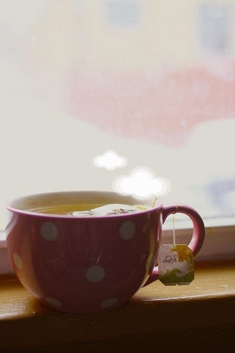 不加糖的綠茶也是專家很多推薦的飲品呢~含有抗酸化成分,幫助脂肪燃燒;每天多喝的話對身體代謝效果很有幫助。