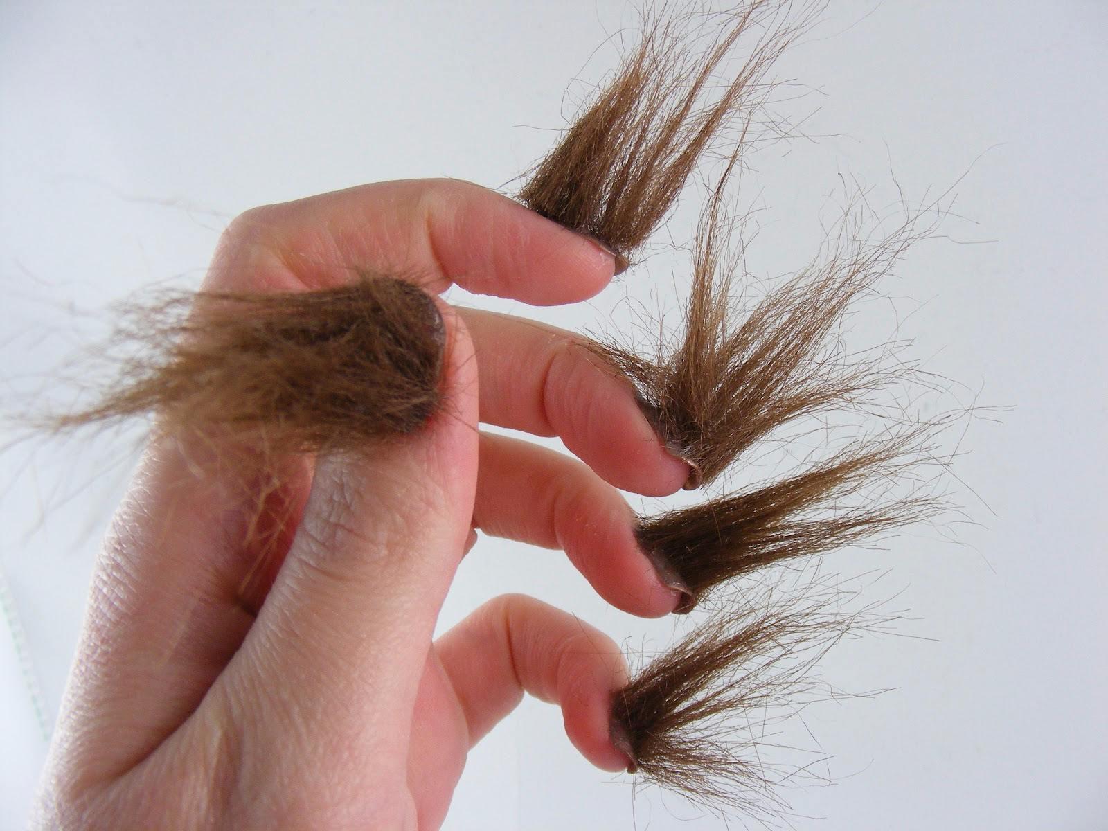 這是誰的頭髮...?