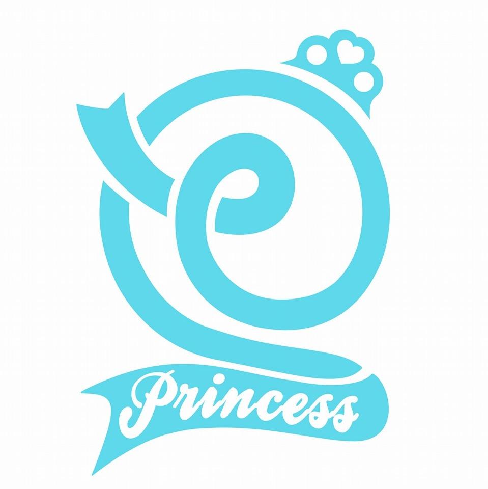 有著可愛 LOGO 的 Princess 隨著出道時間越來越近,也慢慢在公開成員的照片。