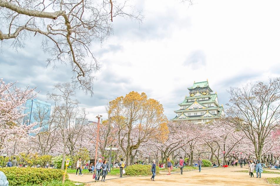 我們來到的地方就是大阪最熱門的賞櫻景點「大阪城」