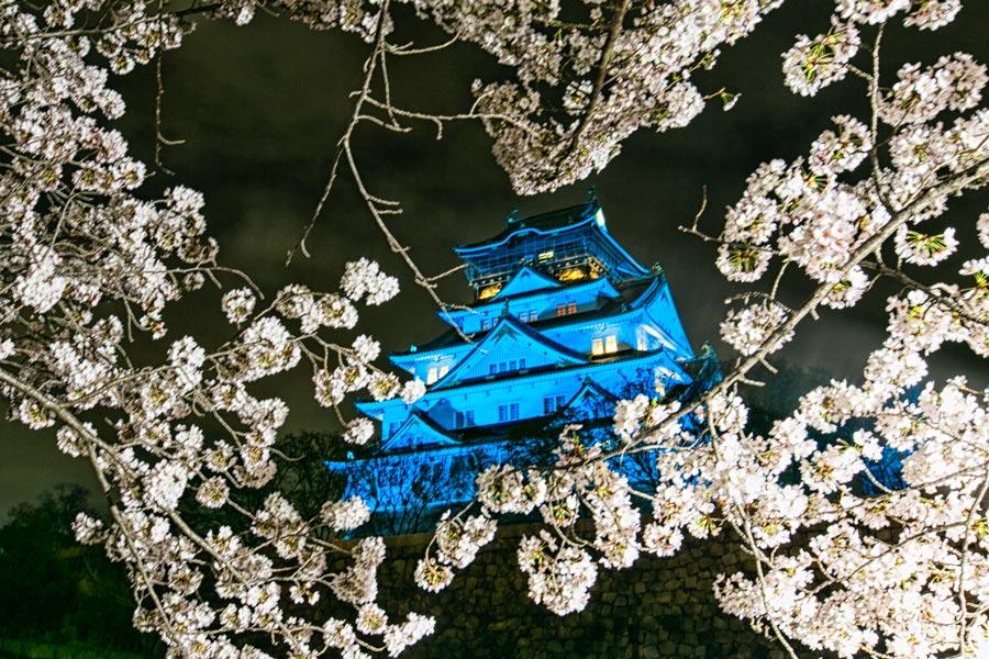 大阪城也會打上燈光喔~ (不過這個藍色怎麼看起來好陰...)