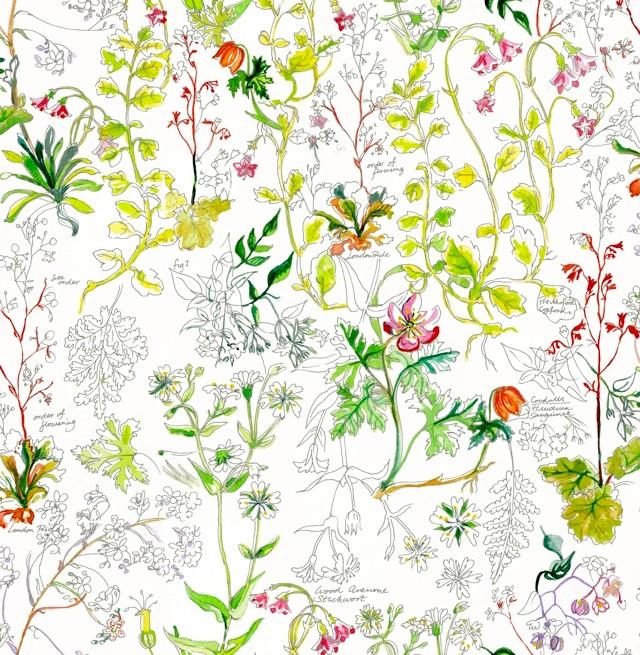 獨一無二的印花設計破曉草原(Dawn Meadow),透過手繪的花卉圖妝點五款Nike經典鞋款