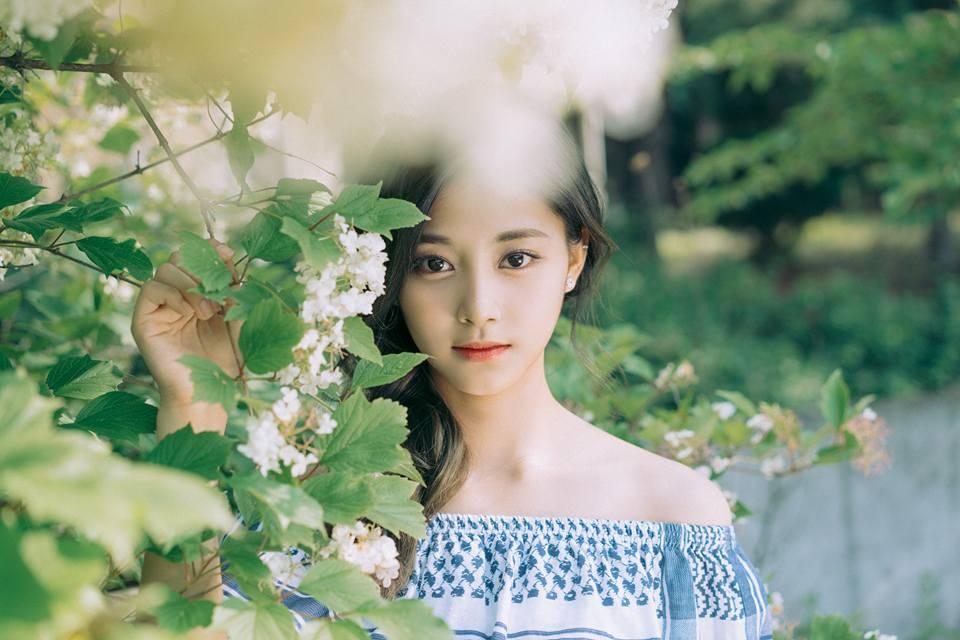 先前所屬JYP的演員,同時也是JYP好友的李廷鎮也是在離開JYP之後仍和JYP保持聯絡。這次的子瑜海報系列更是他的作品。