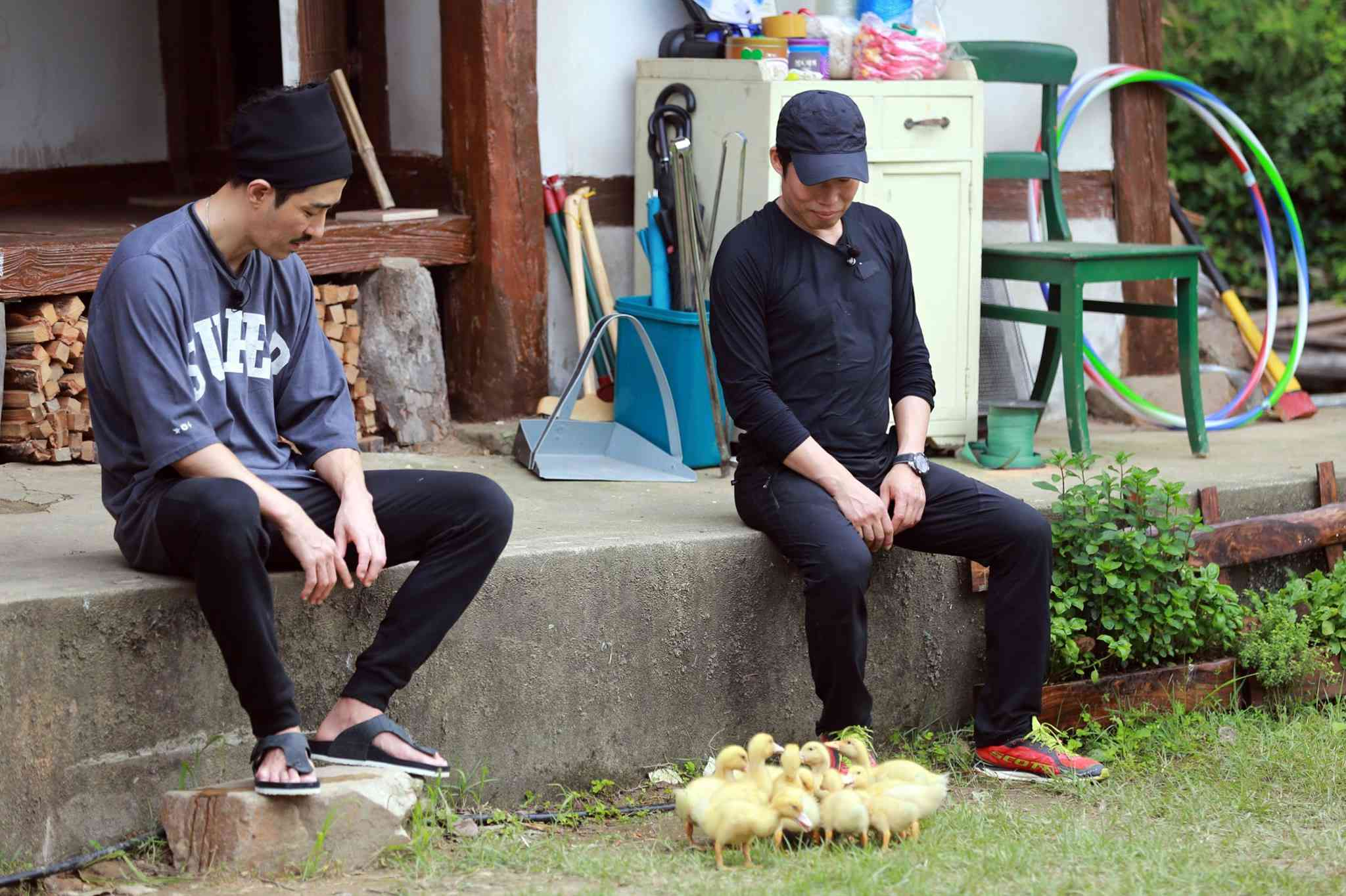 看看他們的表情!!!父愛爆發的表情,雖然有點好笑,但是突然好羨慕那些鴨子.....