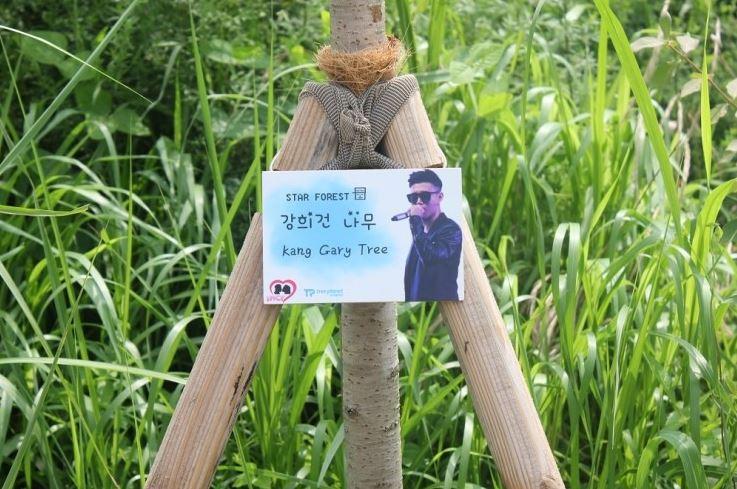 在樹林里可以看到Gary樹...