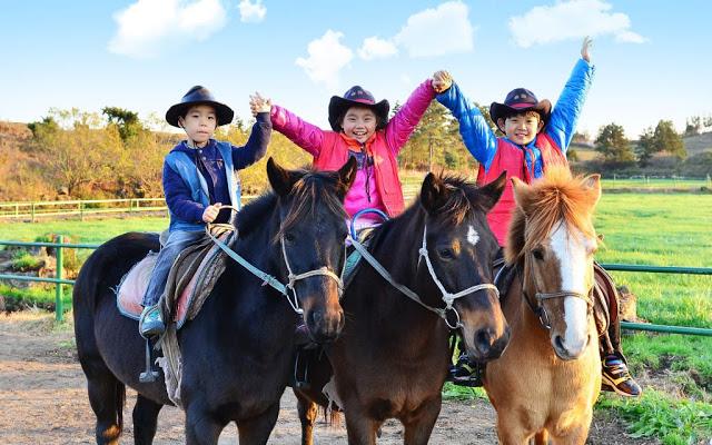 東部觀光巴士一日行程  騎馬體驗!