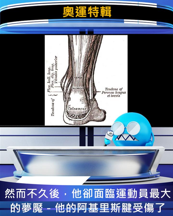 阿基里斯腱是連接由小腿延伸至腳踝後側肌肉的主要肌腱(也就是俗稱的腳筋),很多職業運動員會因過度使用而發炎,甚至撕裂。