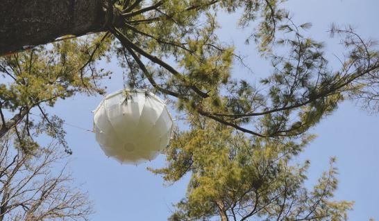 也因此,即使是在高空中,也可以承擔2000~3000公斤的重量哦...而且它有3個進出口(也可作為窗戶),清晨在這樣懸浮在空中的樹屋裡醒來,屋外就是樹枝,被大自然圍繞的感覺不要太好喲♡