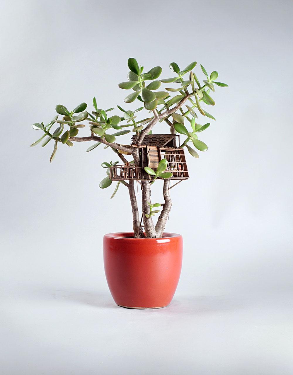 幻想一間只屬於自己的浪漫樹屋... Jedediah 製作的每一間屋子都有屬於自己獨特的模樣和特點!