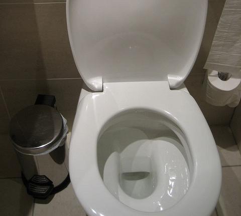 上完廁所,你會猶豫要丟垃圾桶還是丟馬桶嗎?