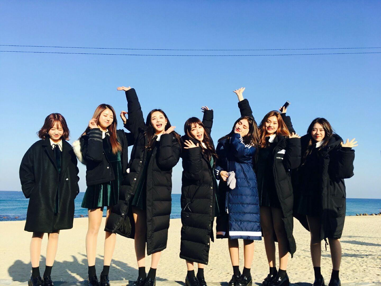 推特追蹤數 GFRIEND 19萬 MAMAMOO 16萬 Red Velvet 未使用 TWICE 55萬 IOI          7萬 BLACK PINK  未使用