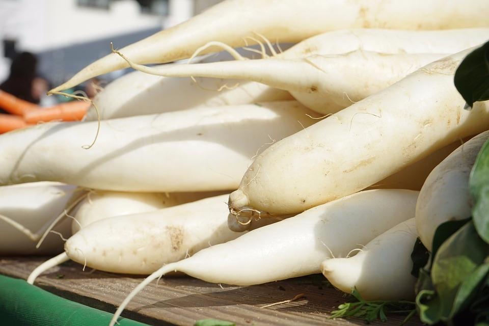 ♯ 白蘿蔔 蘿蔔富含芥子油和消化酶,芥子油是減肥燃脂的良品,消化酶能分解食物中的脂肪,促進脂肪代謝。它還含有膽鹼和維生素C,都能很好地幫助減脂 。此外,蘿蔔含有能誘導人體產生干擾素的多種微量元素,可增強機體免疫力。
