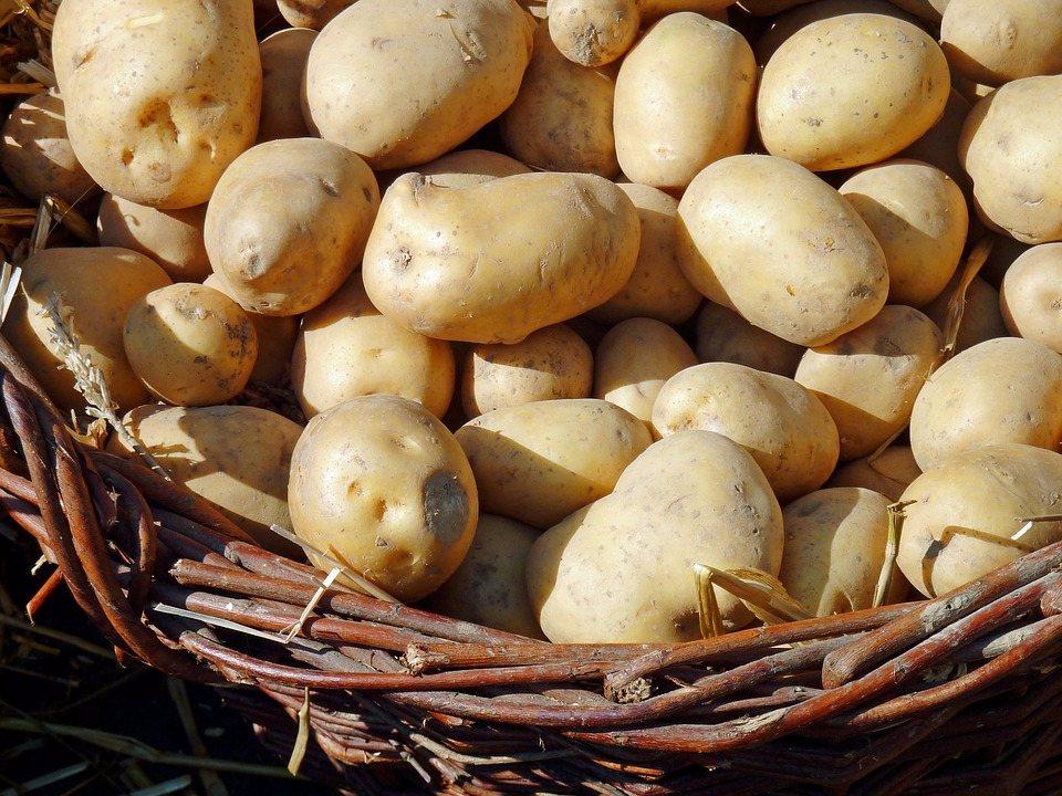 ➤ 馬鈴薯 富含酪氨酸的馬鈴薯是形成黑色素的基礎物質,吃多了會讓肌膚轉黑的機率提升。