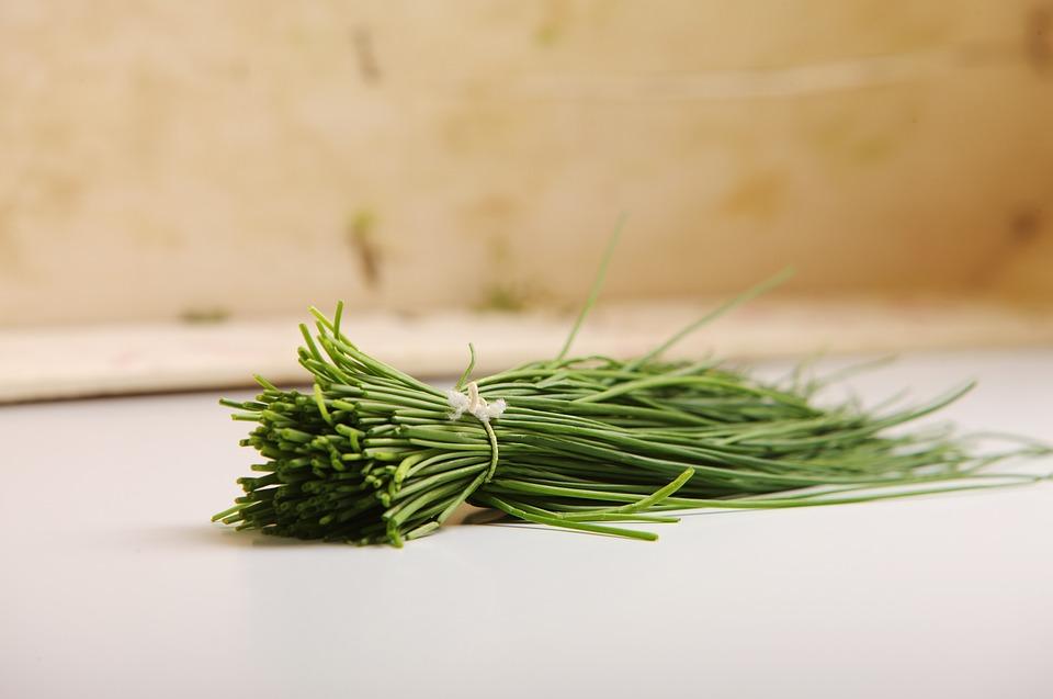 ➤ 韭菜 蔬菜類中也有不少是屬於感光類的,通常是氣味較重或是有辛香感的。