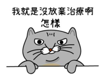 真的是一隻超級囂張的貓咪!就算被嗆還是戰鬥力滿點啊~雖然像這樣恣意行事真的很舒壓,不過妞妞們平時和朋友嘴砲時也要注意火候,如果太白目還是可能會傷感情唷~