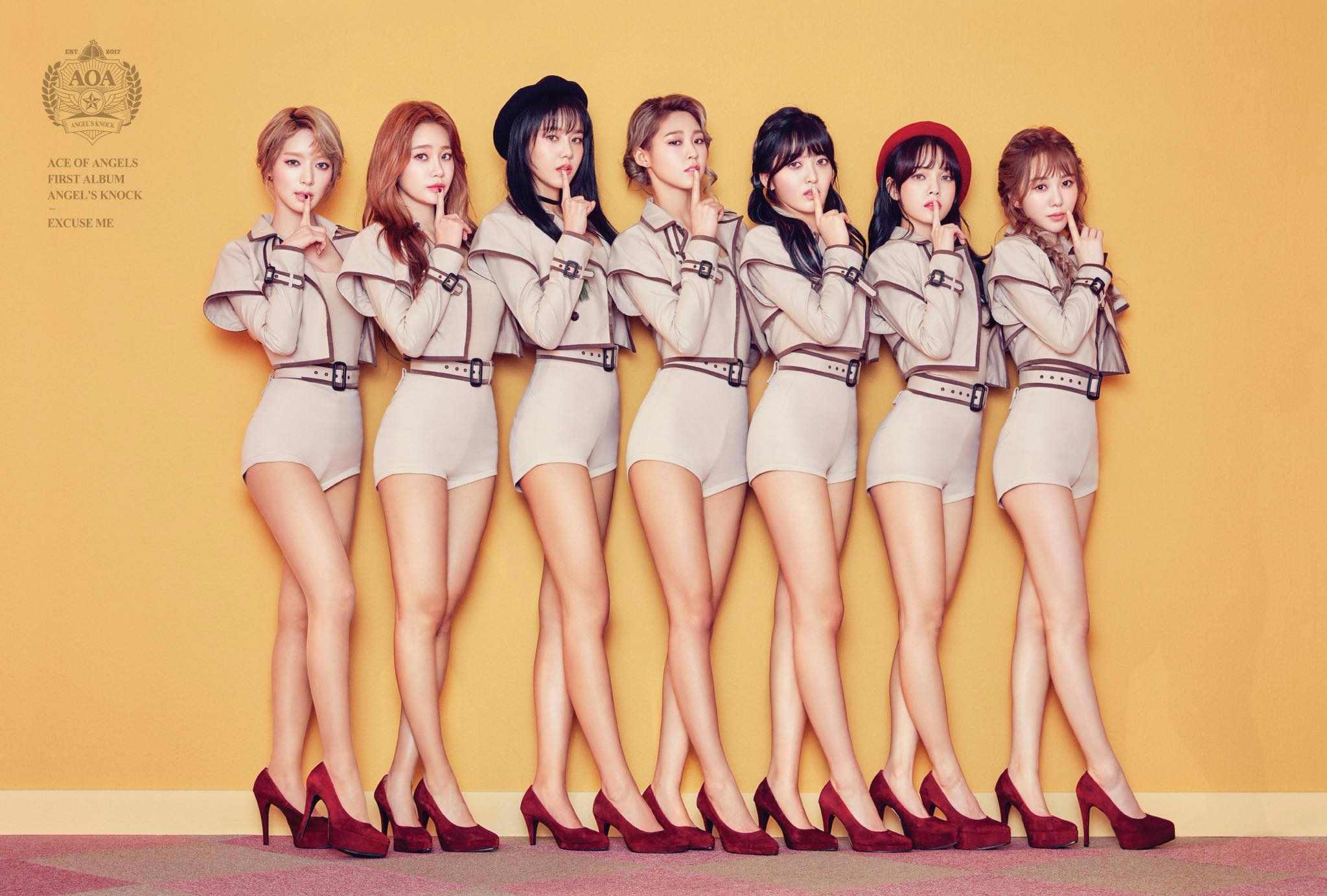 韓國女團AOA以樂團及舞團的形式出道,在2014年1月16日發行了第五張單曲專輯《短裙》以性感風格回歸,這首歌受到大眾們的喜愛也讓她們的知名度再度攀身~