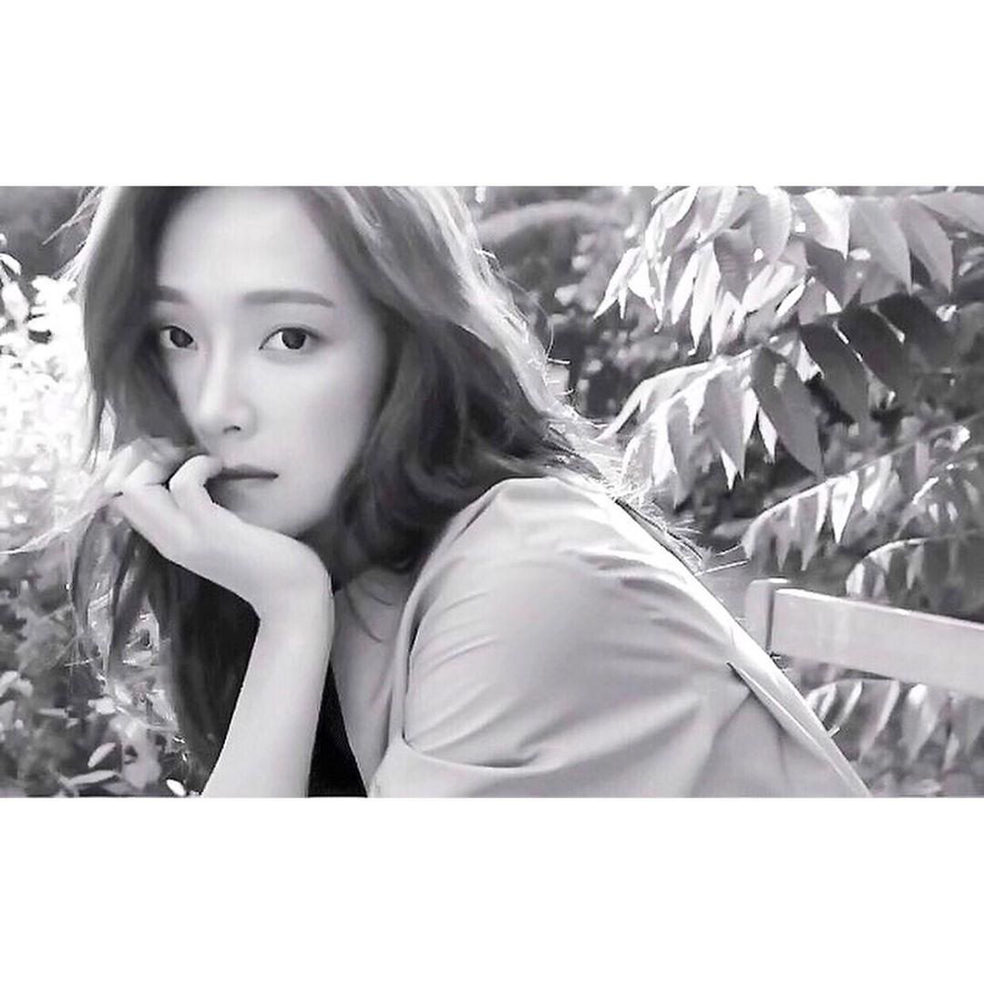 除了將在8月回歸之外,Jessica也將在8月13日舉行《Jessica On Cloud Nine 10th Anniversary Live in Seoul》出道10週年演唱會。 而經紀公司 Coridel 娛樂表示:「 Jessica 為紀念出道10週年舉辦演唱會,而這場演唱會也是為了一直以來喜愛 Jessica 的粉絲們所準備的活動,希望粉絲們可以抱有高度的期待。」