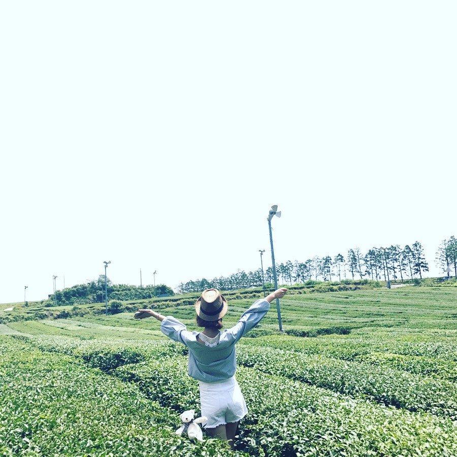 #在綠茶博物館邂逅歐巴 Innisfree大片大片的綠茶園怎麼拍都是風景!還可以體驗自製綠茶香皂,園內的咖啡廳有綠茶冰激凌,綠茶蛋糕,味道一級棒呢。這裏還是李敏鎬歐巴經常拍攝畫報的地方,來到歐巴走過的地方,有沒有覺得很幸福呢。