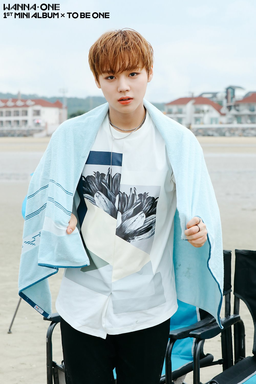 Wanna One從出道前就累積了大批粉絲,出道後的人氣更是一飛衝天,不只在韓國就連在海外人氣也非常高!成員們也將在10月7日首度來到台灣,台灣的粉絲們都準備好了嗎?