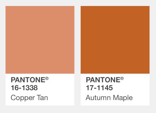 #髒橘色、楓葉色 Copper Tan銅棕色、Autumn Maple秋楓褐  一樣帶有土色的橘色系,給人溫暖的感覺。