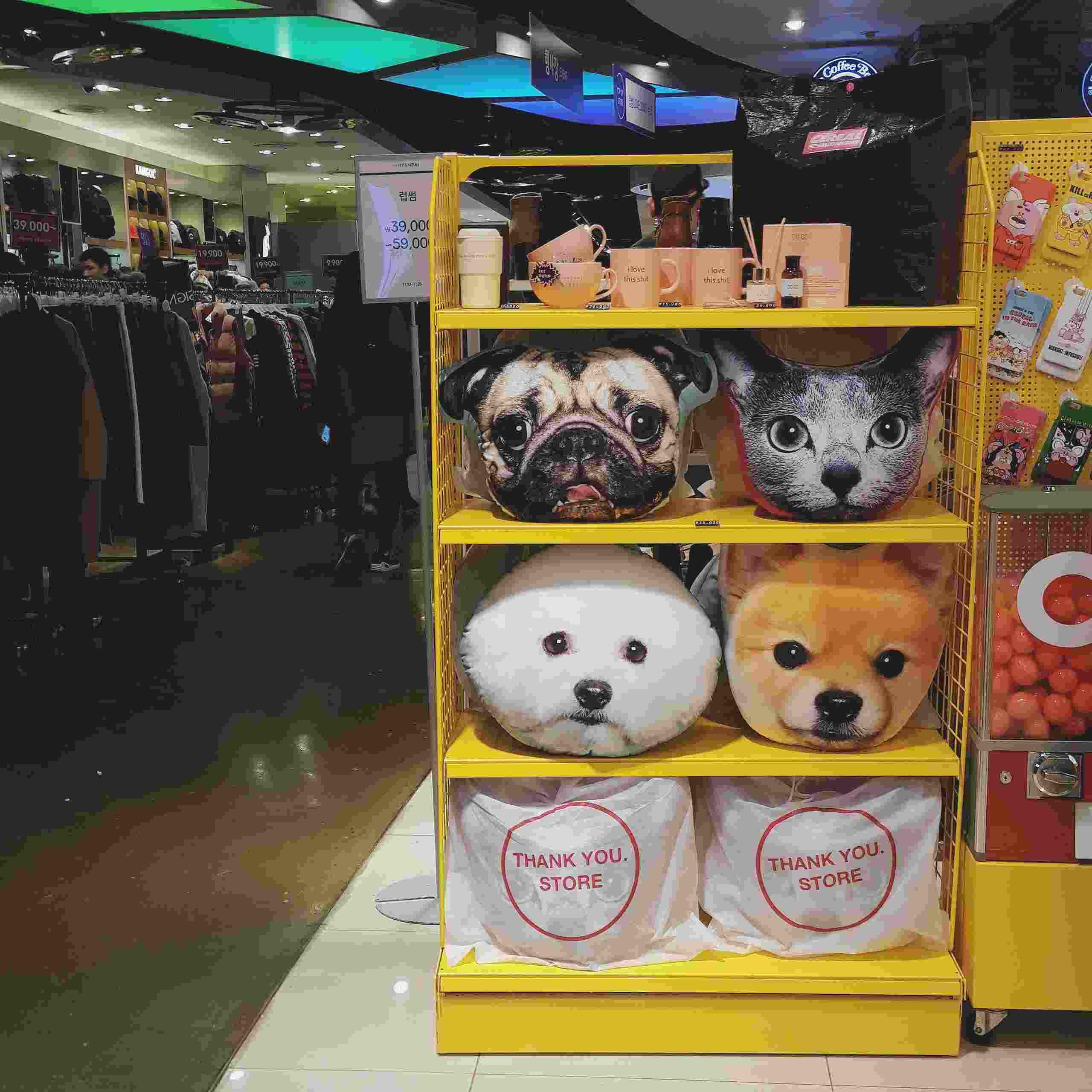 除了thankyou系列,這裏也有賣midnightinseoul的產品,如果大家行程安排上只能來新村,也不用怕錯過趙權店裏的商品喔!