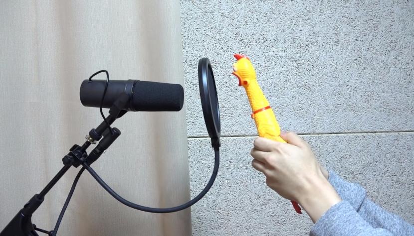 沒錯!不要懷疑你的眼睛!!你沒看錯就是一隻雞!!! 這名網友用「雞玩偶」的叫聲來模仿BTS的歌曲,雞的叫聲和歌曲簡直是「神同步」! 雖然有時候雞玩偶會破音,但這支影片也成功引起大家的注意啦~