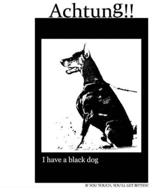 鐘鉉過去也曾在instagrampo出一張黑狗的圖案,後來更是將這個圖案刺在身上,而黑狗的圖案也代表著憂鬱症,英國首相邱吉爾曾說過「心中的憂鬱就像隻黑狗,一有機會就咬住我不放」