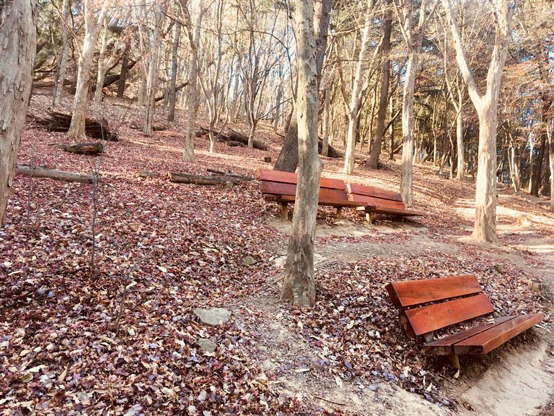 一路上還提供各種座位讓人稍作休息,就這樣走走停停,很快就到啦~