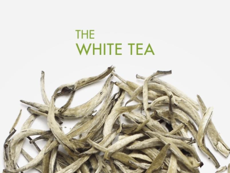 裡面所含的白茶其實來頭可不小,白茶葉子被白色的毛覆蓋,是只發酵5~15%的半發酵茶,而且一年中只有在春天的幾天時間內可以採收到,非常稀有,在古代甚至是皇帝才能喝的茶!妳看看你的肌膚有多珍貴就好XDD