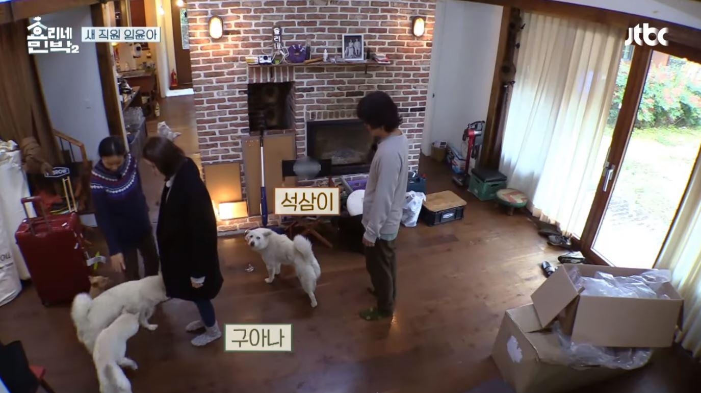 不過其實在韓國演藝圈裡,似乎養「非品種狗」的明星才是少數。像是從節目中就看得出很愛動物的李孝利就是因為流浪狗和老公李尚順結緣