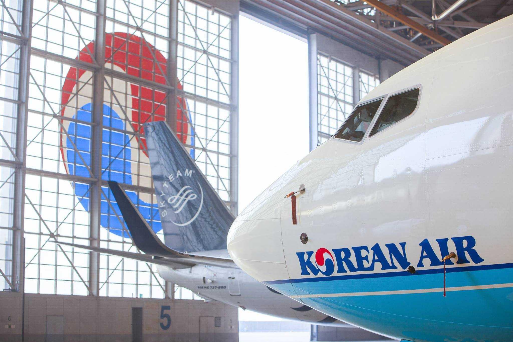 4月13日有一個請願為「禁止個人企業大韓航空使用