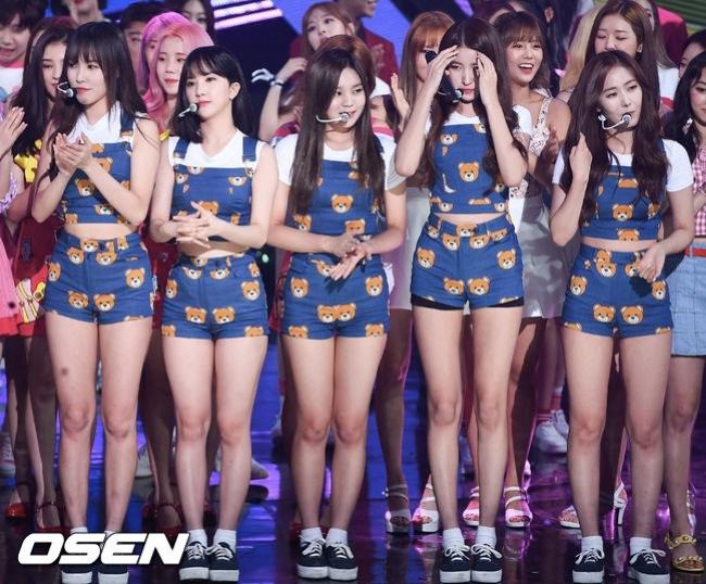 韓國網友都表示無法理解這套服裝,連粉絲們也認為是靠GFRIEND的顏值再撐的,也讓人不禁聯想到過去的「小熊服裝」,這套服裝當時也在網路上引起熱烈討論,粉絲也紛紛向造型師喊話:拜託給力一點!