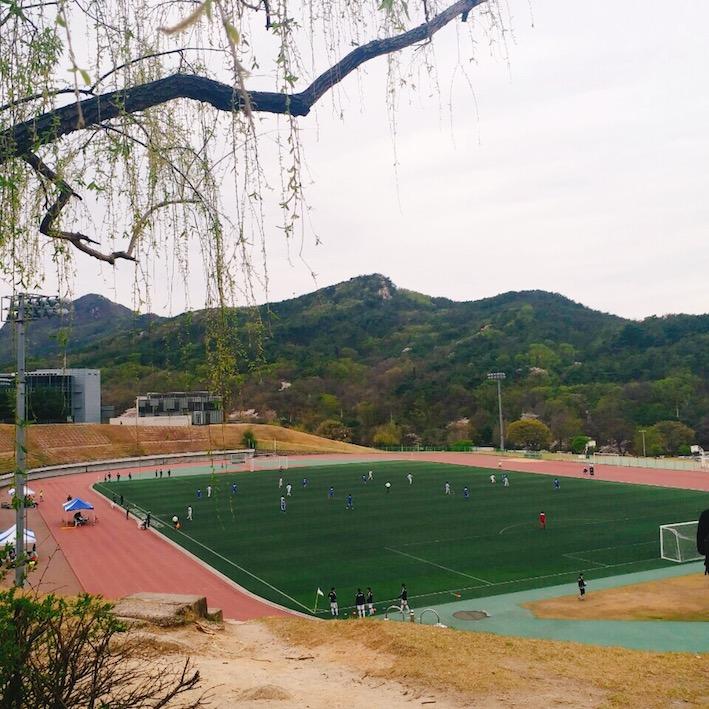 在샤로수길(sha-ro-su-gil)吃飽喝足後,還可以去附近的冠岳山散步爬山,或是去韓國的最高學府首爾大學逛逛~來到首爾的話記得把샤로수길(sha-ro-su-gil)加到行程裡哦!