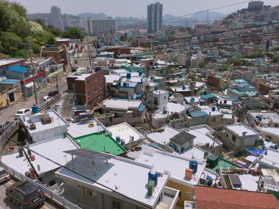 最近釜山為了預防炎熱的夏天,與企業聯手將100座建築物的頂樓,塗上白色的防水降熱漆!白色屋頂就像下了一場雪一樣~