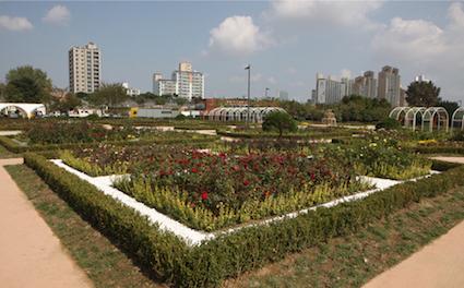纛島漢江公園(뚝섬한강공원):纛島漢江公園適合租借腳踏車騎乘、可以享受多樣化的文化生活