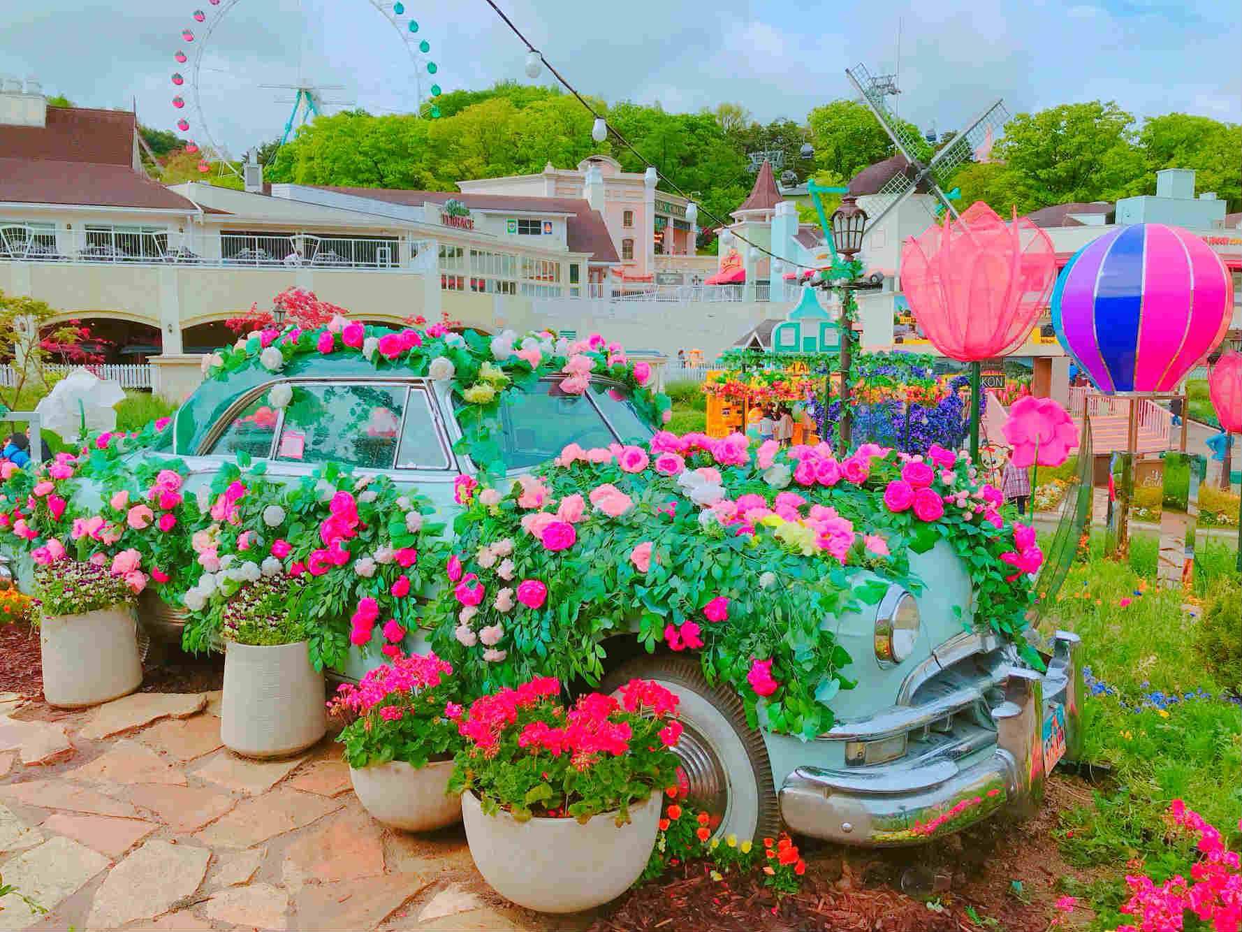 不僅如此,還用了各種鮮花裝飾房屋與古董車,簡直像進入童話故事一樣。