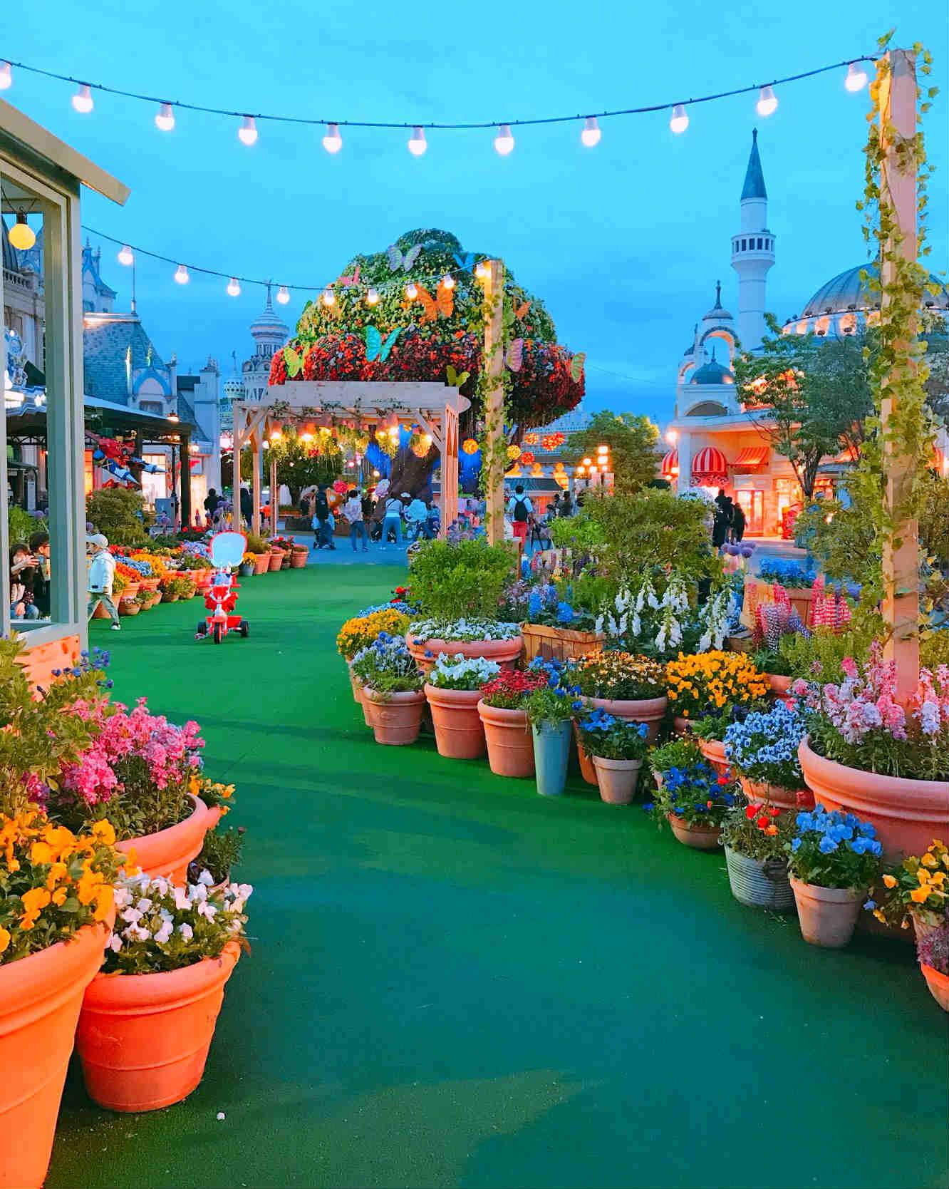 晚上的愛寶樂園也一樣美,佈滿鮮花的步道,走在其中,可以盡情享受春夜的微風