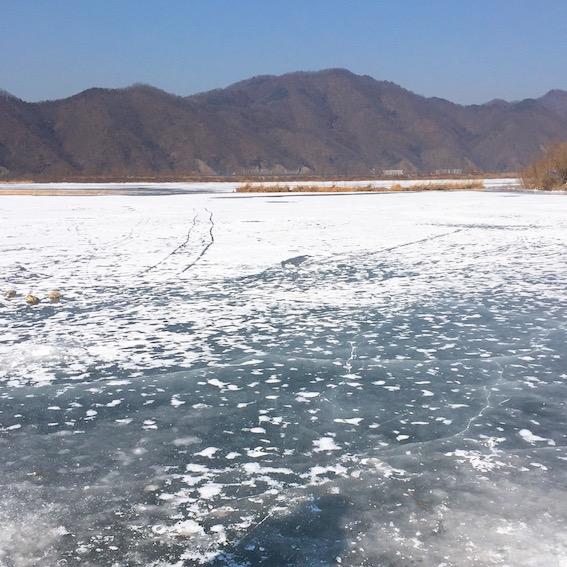12月:江陵、居昌、利川、浦項、大關嶺 特點:可以看到最自然又漂亮的雪景