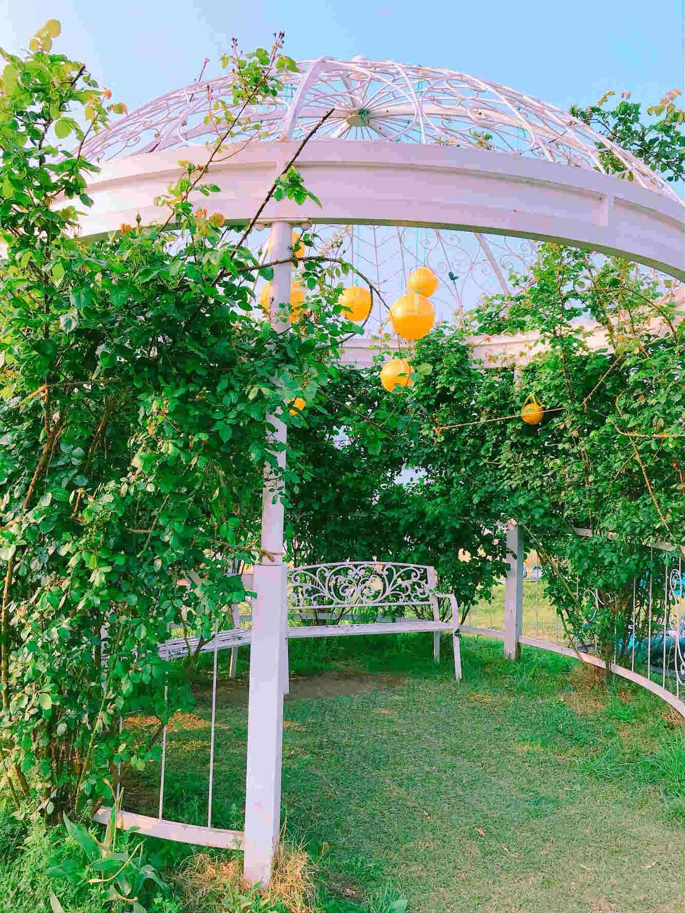 走到瑞來島的盡頭,還會看到幾個具有特色的小庭園,也是拍攝打卡照不可遺漏的場景之一呀!