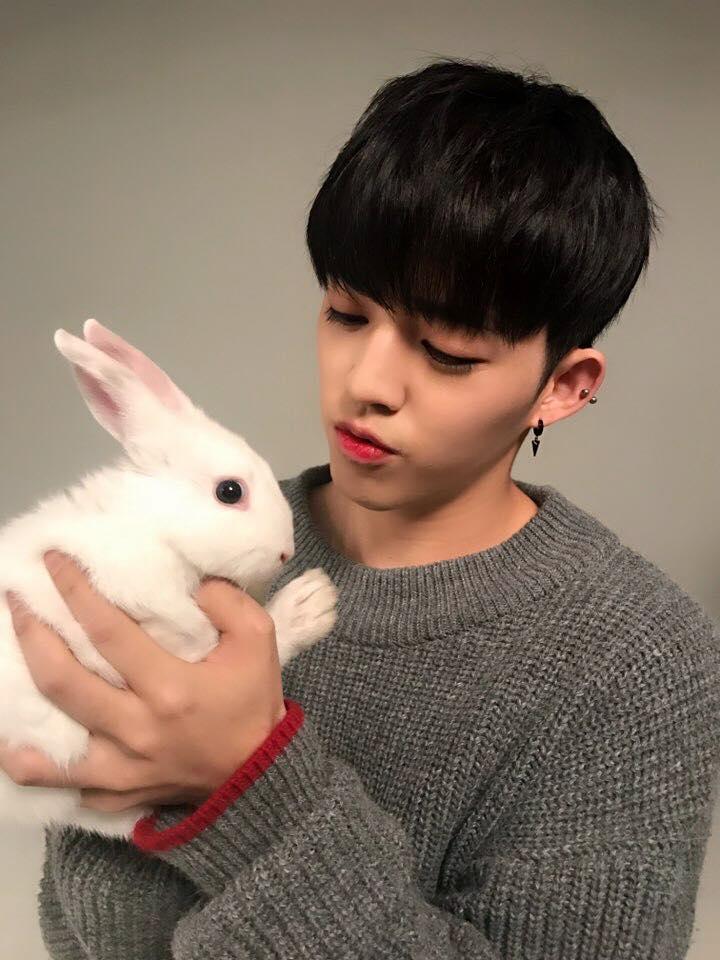 # SEVENTEEN - S.coups 戴著耳環的S.coups根本就比旁邊的兔子好看一百倍吧 (喂)