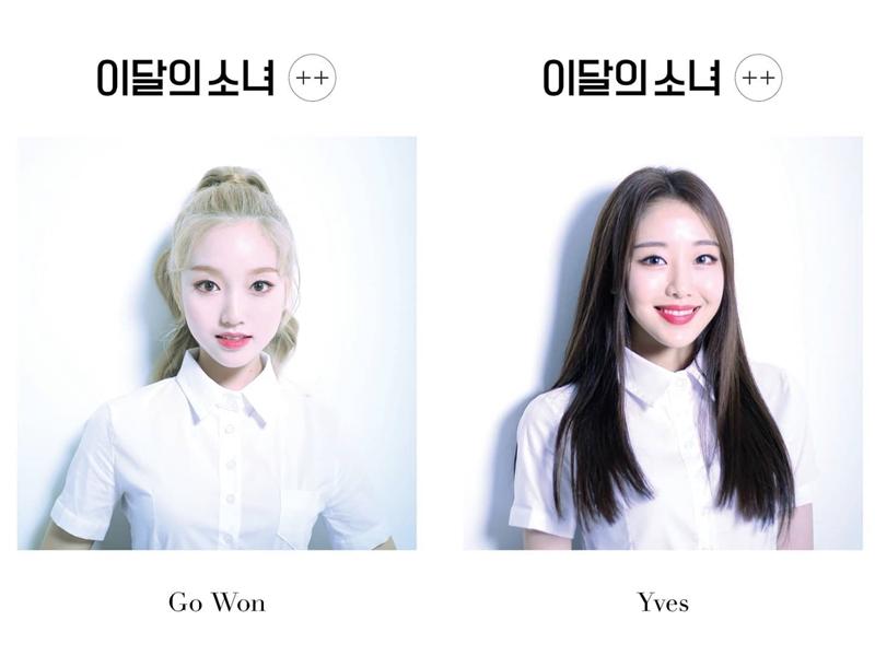 先前正在打歌期的本月少女,剛好OH MY GIRL也是打歌期,Go Won真的也能稱作「成功的粉絲」! 這樣看起來OH MY GIRL是很多藝人們喜歡的偶像呢XD