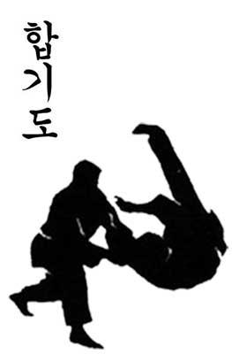 2.hapkido 指的是韓國的運動「合氣道」。