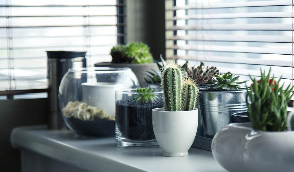 居家環境「得」良好:保持環境良好採光及通風,並將濕度控制在50-60度之間,定期清洗寢具並烘乾,能降低外在環境引起的過敏來源。