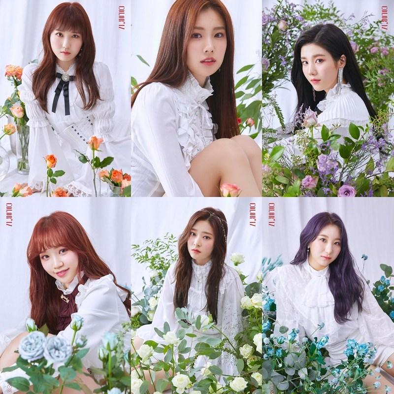 第三波宣傳照和前兩波相比,更多了清純和優雅的氛圍,而每位成員的玫瑰花顏色都有搭配她們代表色~